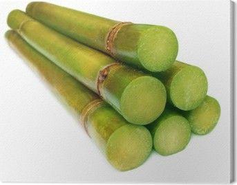 Sugarcane (Saccarum officinarum)