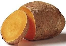 Sweet Potato (Ipomoea batatas)
